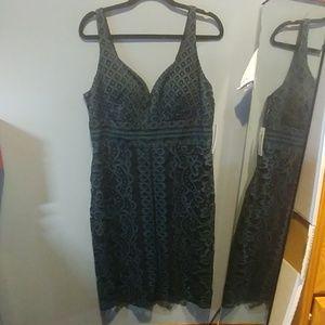 Women's Size 14 Dress